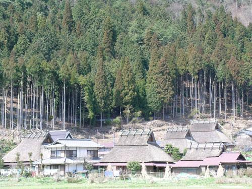 Kitayama village