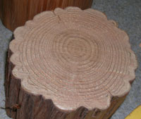 cross section of molded Kitayama cedar log