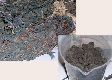 dried indigo